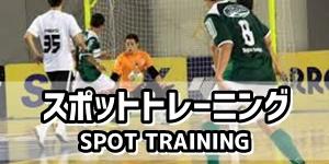 スポットトレーニング